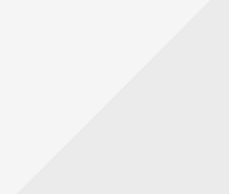portfolio placeholder - Ut litora vestibulum sceleri